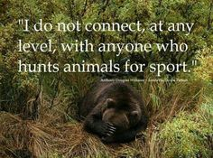 And to the bullshit argument that the money from trophy hunting actually helps the animals, very little of it goes to conservation & animals, and way more is made off non lethal nature/animal viewing, so quit justifying this sick 'sport'! The Animals, Amor Animal, Stop Animal Cruelty, Animal Quotes, Animal Humor, Animal Welfare, Animal Rights, Beautiful Creatures, Animals Beautiful