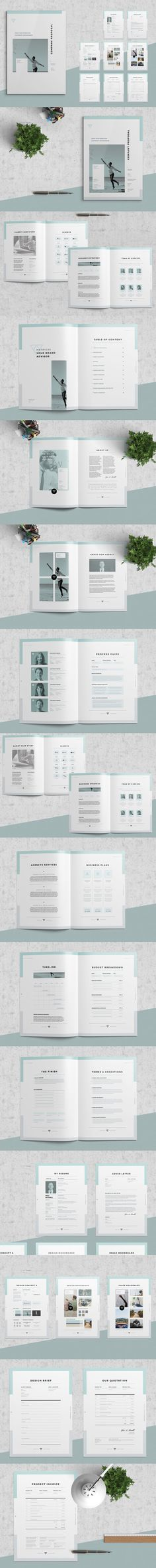 Clean And Professional Company Profile Template Indesign Indd