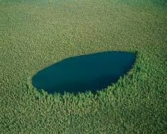 Image result for canadian boreal forest Northern Canada, Outdoor Decor, Image, Lakes, Beautiful Places, Sweetie Belle, Men, Lost, Sky