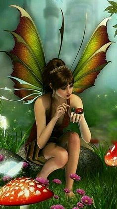 Fairy and Ladybug Elfen Fantasy, 3d Fantasy, Fantasy Artwork, Fantasy Fairies, Beautiful Fantasy Art, Beautiful Fairies, Beautiful Artwork, Fairy Pictures, Butterfly Fairy