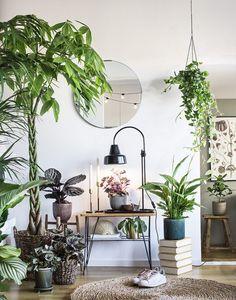 Interior Plants, Interior And Exterior, Decoration Plante, Natural Home Decor, Home Decor Bedroom, Home Decor Inspiration, Design Inspiration, House Plants, Interior Decorating