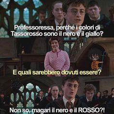 Harry Potter Wattpad, Harry Potter Ginny Weasley, Harry Potter New, Harry Potter Tumblr, Harry Potter Anime, Harry Potter Pictures, Harry Potter Quotes, Verona, Harry Potter Aesthetic