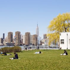 Beautiful park in the heart of Greenpoint, Brooklyn, NYC