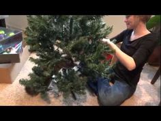 *Oskar the blind kitty decides that his hooman mom needs help to get the Christmas tree ready. He makes sure he gets the job done!