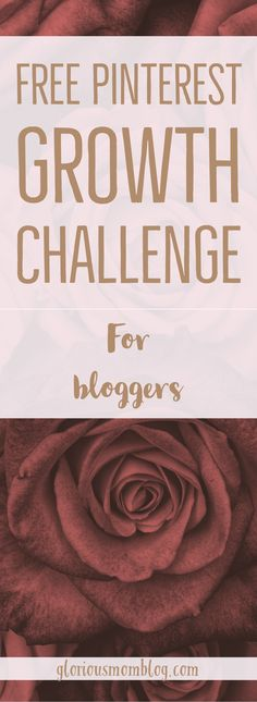 If you are a blogger looking for growth on Pinterest, more Pinterest referrals, more click-throughs to your website, and more Pinterest followers, this Pinterest challenge will teach you the basics of using the platform to promote your blog, and help you get momentum and increase your traffic. Sign up for the free challenge at gloriousmomblog.com!