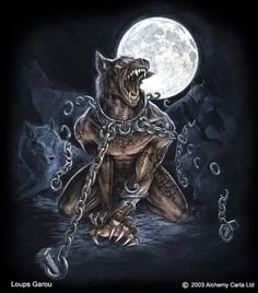 Read soul of a beast from the story Vampire/ werewolf poems (atty awards) by with 315 reads. Soul Of A Beast Controlled by th. Fantasy Kunst, Fantasy Art, Fantasy Creatures, Mythical Creatures, Bark At The Moon, Werewolf Art, Werewolf Legend, The Beast, Geniale Tattoos