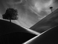 iron dunes by © Zvonimir Perić