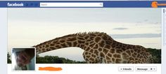 More of the most creatively designed Facebook Timeline profiles.