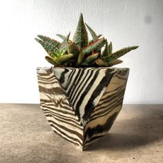 Sculptural Ceramic Planters by Cody Hoyt $150 each 5x5x5 MUST check the others: http://codyhoyt.tumblr.com