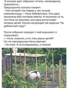 Фотография Russian Humor, Man Humor, Teaching English, Jokes, Outdoor Structures, Funny, Humor, Husky Jokes, Memes