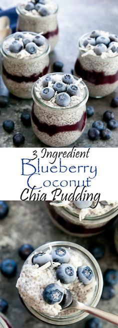 3 Ingredient Blueberry Coconut Chia Pudding