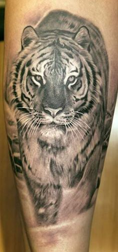 tiger tattoo traditional - Cerca con Google
