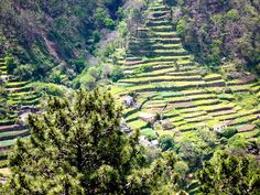 Curral das Freiras III by ichbinsEvi, via Flickr, Madeira Island, Portugal