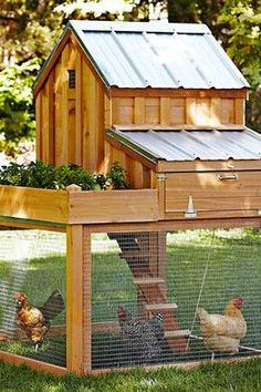 Williams-Sonoma cedar chicken coop. Pricey   but cute idea. I see a DIY project coming.