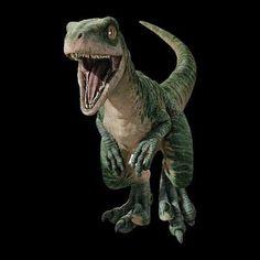 Echo Jurassic World Raptors, Jurassic World 2015, Jurassic World Dinosaurs, Jurassic Park Party, Jurassic Park Series, Dino Drawing, Dinosaur Art, Prehistoric Creatures, One Direction Pictures