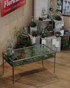 Terrarium Table at the Garden Museum Exhibition