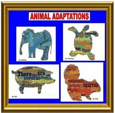 FUN AND EASY ANIMAL ADAPTATION PROJECT USING TECHNOLOGY!