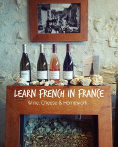 WINE, CHEESE & HOMEWORK! Learning French in the Loire Valley, France.