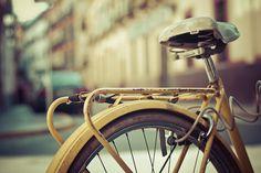 En amarillo | Flickr - Photo Sharing!
