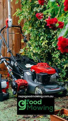 Affordable lawn mowing and shrubs trimming in Bundoora Lawn Mower, Shrubs, Outdoor Power Equipment, Melbourne, Grass, Home And Garden, Lawn Edger, Grass Cutter, Grasses