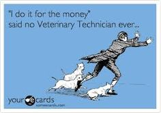 Things That No One Tells You About Being a Vet Tech « The Handmade ...