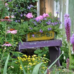 A little bench and planter made from a wood crate set the tone for the garden. Located near the entrance to the backyard, the combo serves as a focal point. Sikorski added more interest by painting it purple, her favorite color./