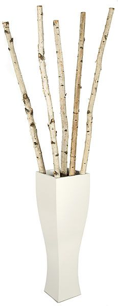 "6' to 8' Natural Birch Poles - 5 Piece Bundle 1"" - 2"" Thick ITEM:   W-90010"