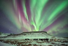Northern Lights - Iceland (Under The Green of The Night, The Horses Did Roam)