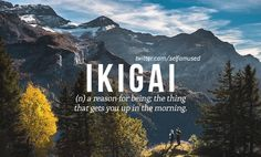 Ikigai (n) ..the reason for being, the thing that gets you up in the morning