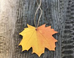 Maple leaf ornaments in autumn colors for nature and garden lovers