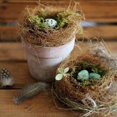 Learn how to make realistic looking bird's nest using free materials from your garden. Perfect for Spring and Easter or your guestroom #Birds