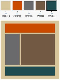 Living Room color scheme?  background is the walls, grey is the quatrefoil rug, brown is the couches, orange & turquoise are the accents