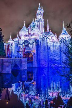 Disney Castle at Christmas~ let's all save our monies and go to Disneyland next Christmas. Disney Love, Disney Magic, Disney Parks, Walt Disney World, Paris Tumblr, Disney Christmas, Christmas Florida, Christmas Time, Blue Christmas