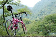 Copyright © へへ 様 / 2014年 Horize / この企画のおかげで、子供が大きくなり使わなくなったデジカメがフル活用するようになりました。デジイチを背負ってのサイクリングを楽しんでいます。