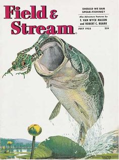 1000 images about bass on pinterest largemouth bass for Bass fishing magazine