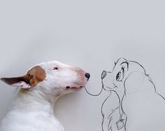 Pop Culture-Inspired Photos of an Adorable Dog in Illustrated Scenes