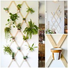 7 DIY pra fazer um jardim dentro de casa
