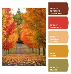 bright reds burnt oranges brick yellow mustard peach green burgundy merlot warm hues saturated fall autumn palette tonal tones color family leaves trees nature dining room kitchen den basement office marketing branding scheme Paint colors from #ChipIt! by #SherwinWilliams