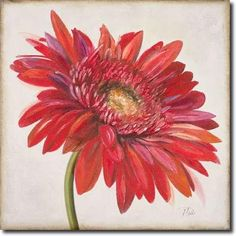 Patricia Pinto Solid-Faced Canvas Print Wall Art Print entitled Red Gerbera Daisy, None Acrylic Flowers, Watercolor Flowers, Watercolor Paintings, Watercolor Techniques, Daisy Drawing, Daisy Painting, Margaritas Gerbera, Gerbera Daisy Tattoo, Wall Art Prints