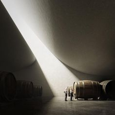Architecture #peterzumthor #unbuiltproposal #winery #valbuenadeduero #spain #architect #architecture #archilovers #architecturelovers #archidaily #christinebodinodesign