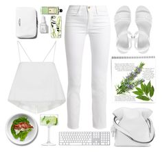 """Styling White Jeans"" by emcf3548 ❤ liked on Polyvore featuring Frame, See by Chloé, Casetify, Serge Lutens, Rodin Olio Lusso, A.L.C., Vagabond, Loewe and LSA International"