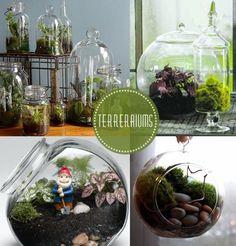 Terrarium diy mini terrarium, miniature terrarium, how to make terrariums, Mini Terrarium, Miniature Terrarium, How To Make Terrariums, Garden Terrarium, Terrarium Ideas, Cactus Y Suculentas, Vivarium, Potting Soil, Container Gardening