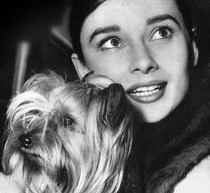 Audrey Hepburn and Mr Famous, 1958. ♡... re-pin by www.StoneArtUSA.com ~ affordable custom pet memorials for everyone.
