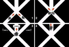 Un ordenador…de cangrejos soldado (Mictyris longicarpus)  Científicos de la Universidad de Kobe han utilizado un enjambre de cangrejos de la especie (Mictyris longicarpus) para crear un ordenador que resuelve problemas básicos de computación.   Esta especie de cangrejos habita en las costas de Australia y pueden formar grupos con decenas de miles de individuos.