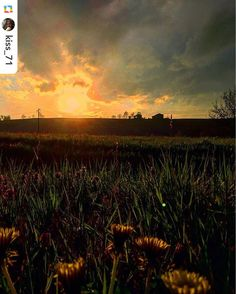 Cari igers  Stanotte ci addormentiamo davanti a questo cielo infuocato che il nostro kiss_71 ha fotografato a Villò una frazione del comune di Vigolzone.  La natura fa miracoli buonanotte a tutti  #igerspiacenza #igersemiliaromagna #turismoer #browsingitaly #whatitalyis #sunset #landscape_captures #landscapehunter by igerspiacenza