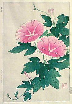 """Morning Glory"" Pink by Kawarazaki Shodo, 1954."
