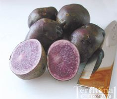 organic all blue potatoes = fun
