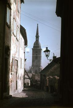 Bratislava, Painting Inspiration