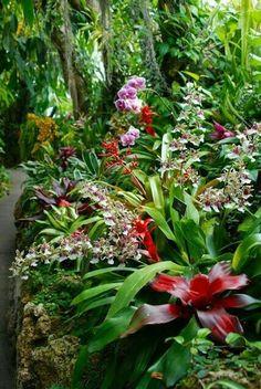Broms Garden