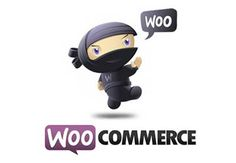 Creating an e-commerce website can be a daunting journey. Imagine if it were nothing more than a matter of few clicks. Thanks to WooCommerce, this is now possible. WooCommerce is a WordPress plugin which helps you create, manage, measure and maintain an online store without any fuss or getting your hands dirty with code (not to mention code nerds can do a lot with its API).